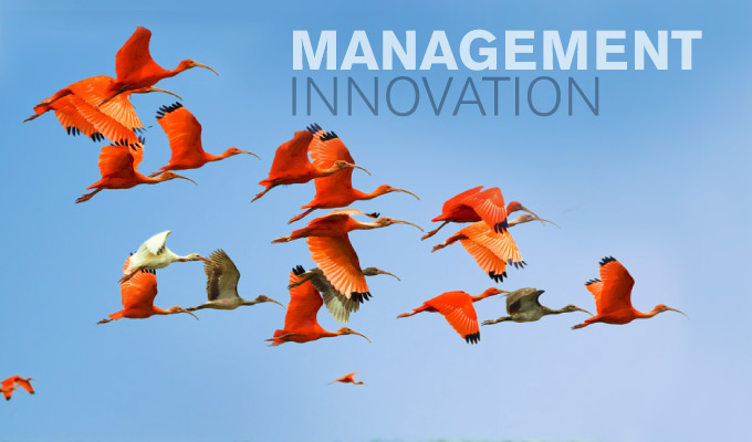 Innovation Managériale - Bluenove